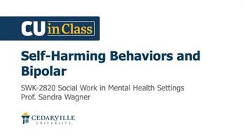View thumbnail for Social Work – Social Work Practice in Mental Health Settings