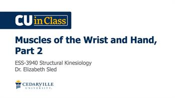 View thumbnail for Exercise Science – Structural Kinesiology